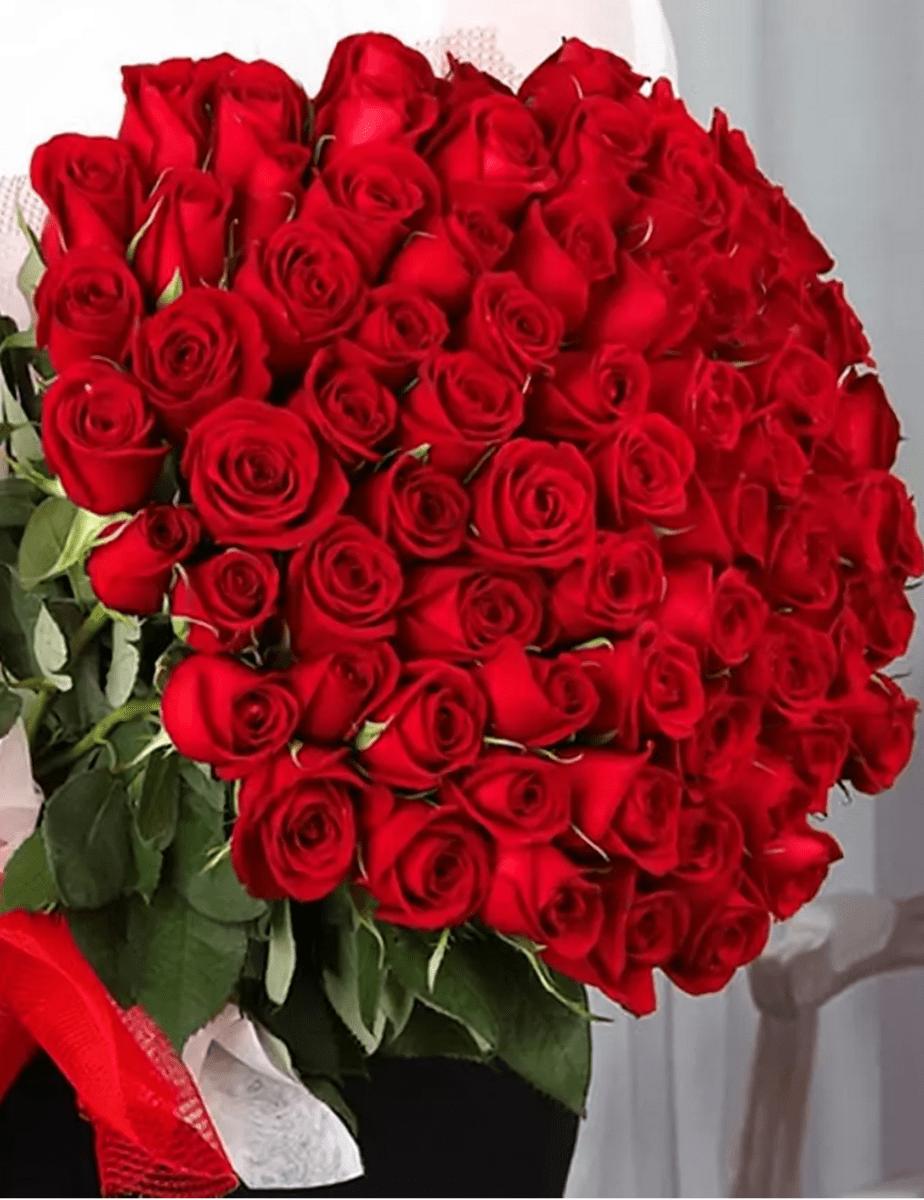 образом картинки розы красные букеты большие и красивые долбит